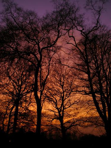 Sun sets on the Heath, 26-i-10