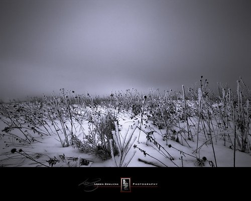 winter snow cold nature field wisconsin landscape photography frozen photo midwest image horizon january picture explore madison marsh prairie canonef1740mmf4lusm 2010 expanse canoneos5d flickrexplore lakefarmpark lorenzemlicka