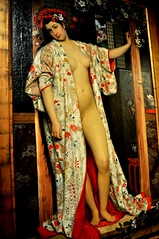 formal wear(0.0), sari(0.0), costume(0.0), dress(0.0), geisha(1.0), art(1.0), pattern(1.0), model(1.0), clothing(1.0), abdomen(1.0), woman(1.0), fashion(1.0), female(1.0), fashion design(1.0), photo shoot(1.0), lady(1.0), person(1.0), beauty(1.0),