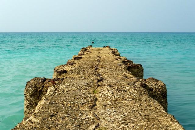 Seashore 14