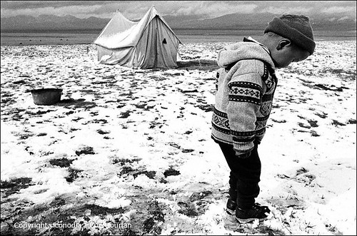2003 camp people bw lake children landscape shepherd lac nb september nomad kyrgyz kg population ethnic paysage centralasia kyrgyzstan enfant gens berger nomade naryn kirghizistan asiecentrale ethnie songkul songköl ethnicgroup nomadcamp traditionallife narynprovince vietraditionnelle 1nb kirghize egourlan iconodia ericgourlan gourlan ethniegoupe campnomade narynregion 31662kgn songkel