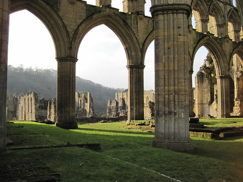 Rievaulx Abbey (14)