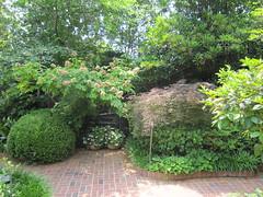Elsong Gardens 1