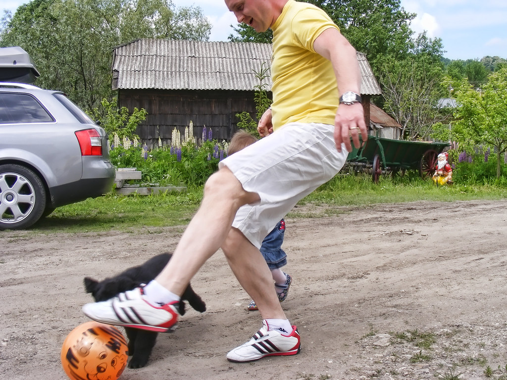 backyard football download