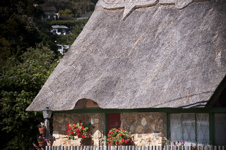 Thatched roof in the West