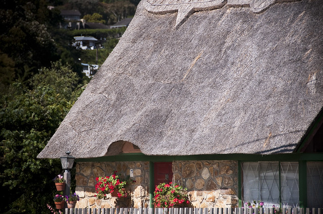 thatched roof definition meaning. Black Bedroom Furniture Sets. Home Design Ideas
