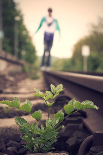 On the rails.