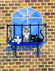Cats on Balcony (cool)