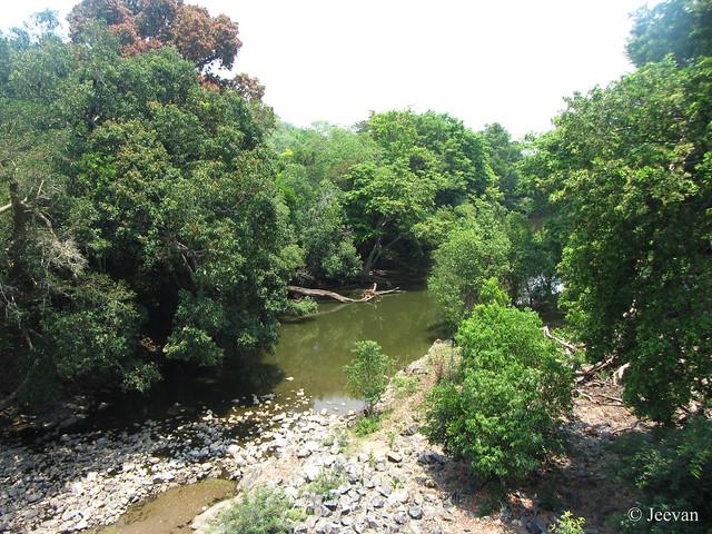 Athikadavu, Bhavani River