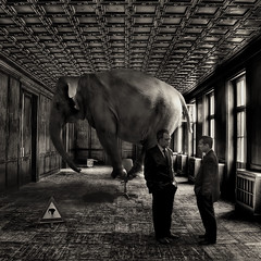 A black and white photo-montage of two men talking in a large, plush reception room with high ceiling - they have failed to notice a large elephant behind them balancing on a swivel chair - on the floor are warning signs about the elephant