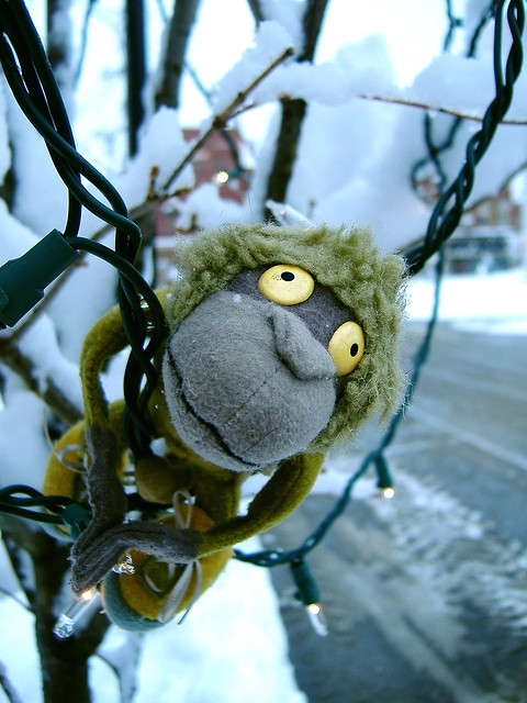 Wishing everybody a very Green Monkey Christmas!