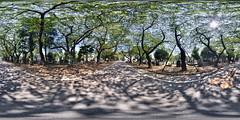 Yanaka Cemetery