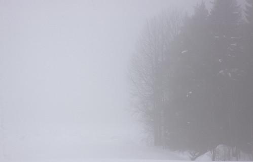 trees winter mist snow field fog forest canon suomi finland landscape countryside talvi 2010 lappeenranta 50d canonef24105mmf4lisusm