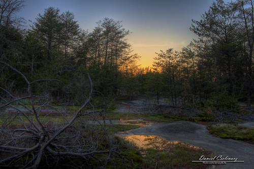 sunset reflection tree sc water silhouette stone canon dead rebel 1855mm clover hdr t1i clovercommunitypark