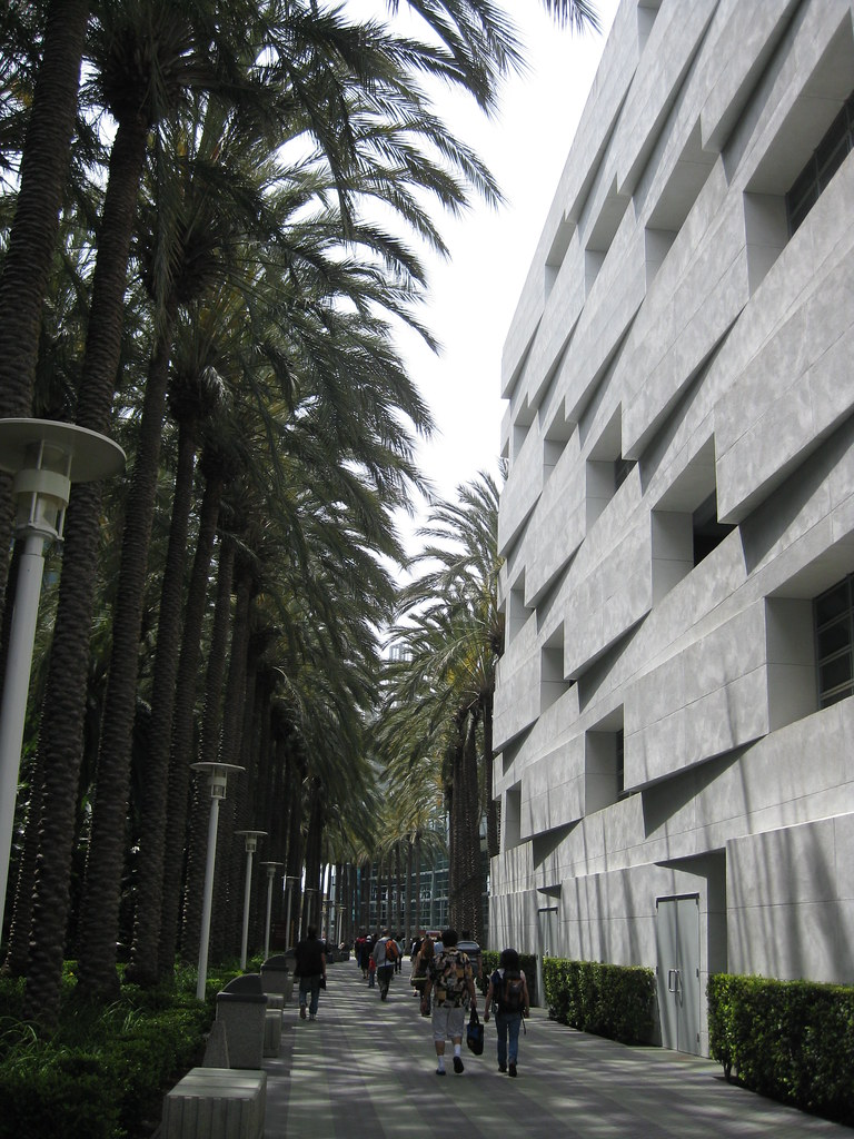 Palm Tree Alley