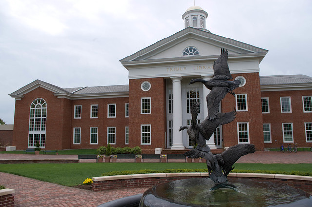 christopher newport university application essay question