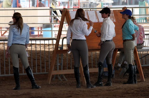 Flickr: The Women in Riding Boots and Jodhpurs Pool
