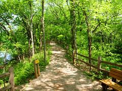 Martin Nature park2