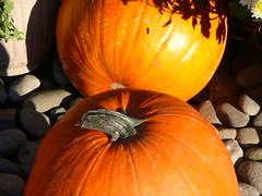 Maine - October 2008