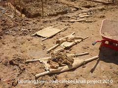 archaeology, soil, wood, geology,