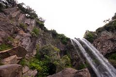 Jeongbang-Falls-9