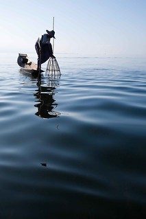 Fisherman fishing with his fish trap - Inle Lake - Burma - Sylvain Brajeul © Copyright