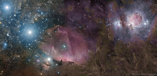 Orion Deep Wide Field