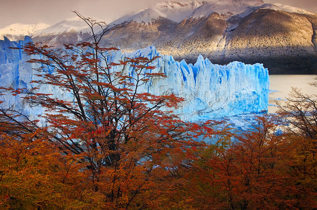 Autumn Among the Glaciers by Michael Anderson