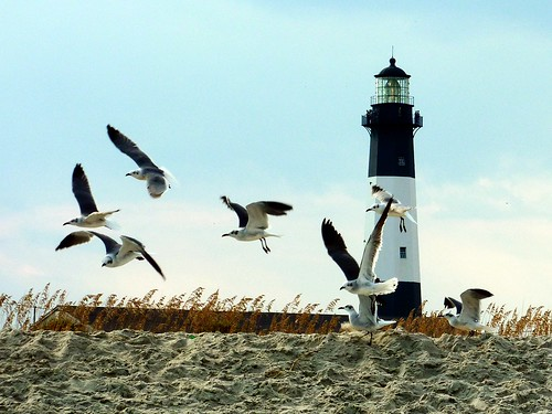 Tybee Island - Tybee Lighthouse