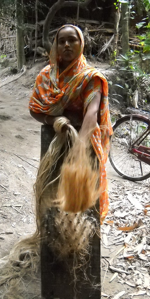 Jahanara combs the tangles in the jute fibre, preparing to twist it into rope. Credit: Manipadma Jena/IPS