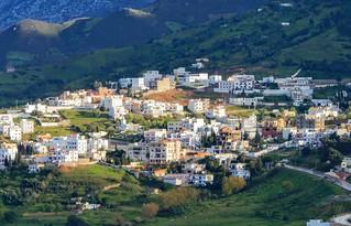 A Shiny Village