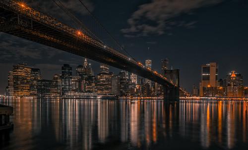 Black & Gold, NY