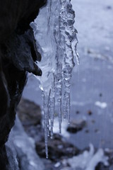 winter, water, melting, ice, formation, frost, icicle, freezing,