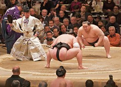 scholastic wrestling(0.0), grappling(0.0), collegiate wrestling(0.0), wrestler(0.0), sumo(1.0), individual sports(1.0), contact sport(1.0), sports(1.0), combat sport(1.0), wrestling(1.0),