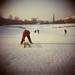 winter holga by Mathias*