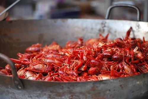 Seafood Fest Everglades City FL