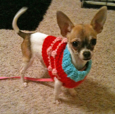 Free Crochet Pattern Chihuahua Sweater : CHIHUAHUA SWEATERS CROCHET PATTERN Crochet Patterns Only