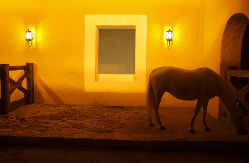 Stable at Night