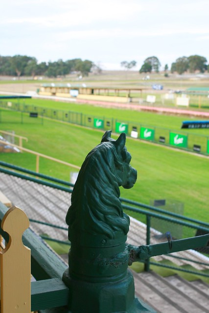 Oakbank Race Course - Horse Head