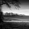 Boarhunt landscape BW by Rich3591
