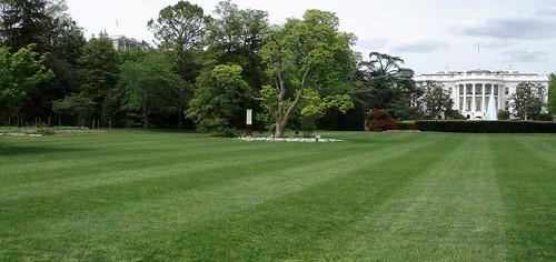 Skippy 39 S Vegetable Garden White House Vegetable Garden