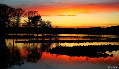 trees sunset lake color reflection nature water landscape outdoors evening colorful view dusk vivid sunsets iowa calm vista majestic platinumphoto diamondclassphotographer flickrdiamond natefischpix