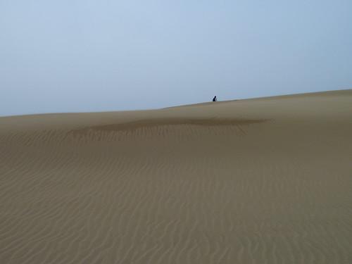 japan sand dunes ripples sanddunes tottori honshu