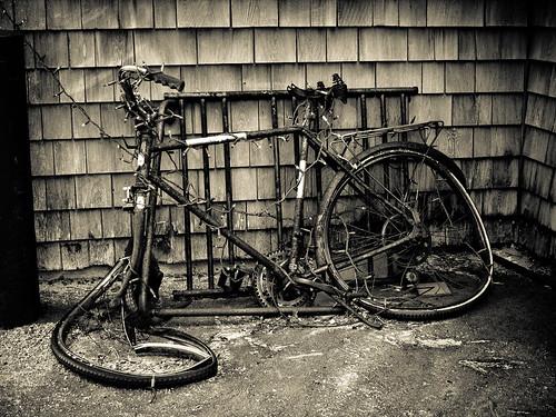 old broken bike bicycle vintage rust decay camden maine rusty oldbike abigfave flickraward theunforgettablepictures lumixg1 oldbycicle mygearandmesilver mygearandmegold