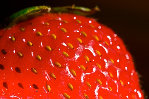 how to grow strawberries in pots at home