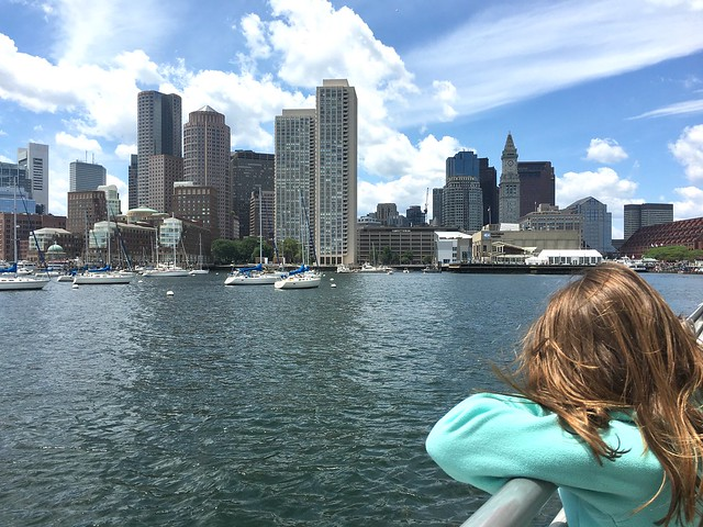 Boston/whale watch