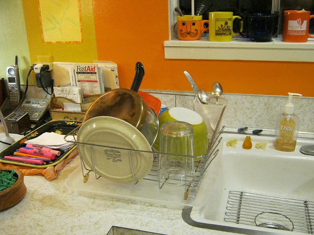 Dishes-2032, Canon POWERSHOT A490