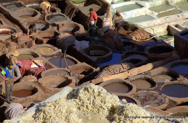 Hard Labour - Fez Tannery District - Fez - Morocco