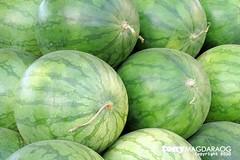 vegetable(0.0), honeydew(0.0), figleaf gourd(0.0), plant(0.0), muskmelon(0.0), gourd(0.0), watermelon(1.0), produce(1.0), fruit(1.0), food(1.0), winter squash(1.0), cucurbita(1.0),