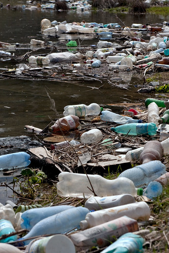 Plastic bottles and garbage on the bank of a river
